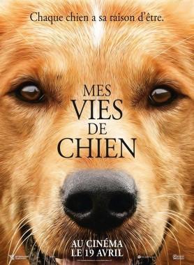 mes_vies_de_chiens.jpg